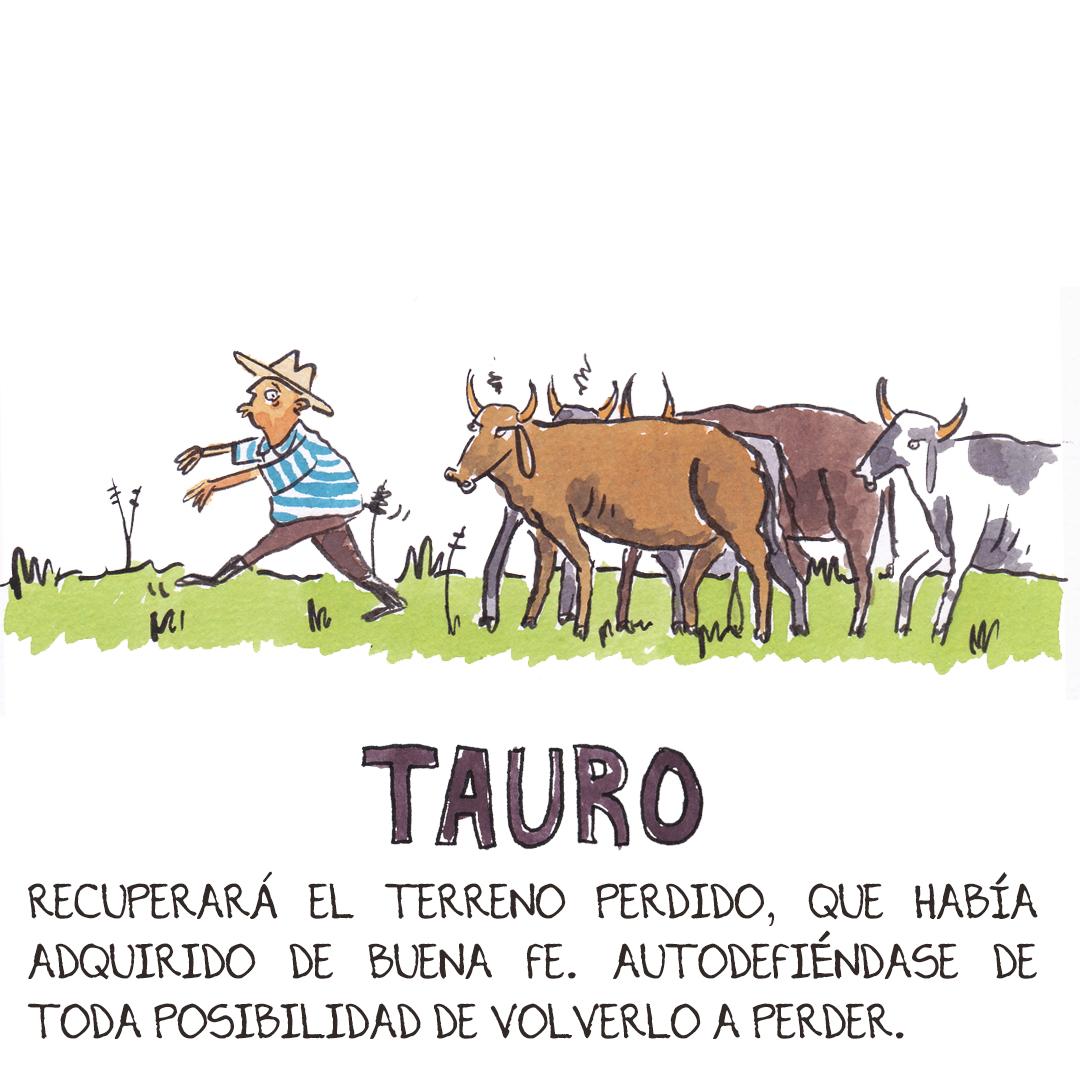 2_tauro